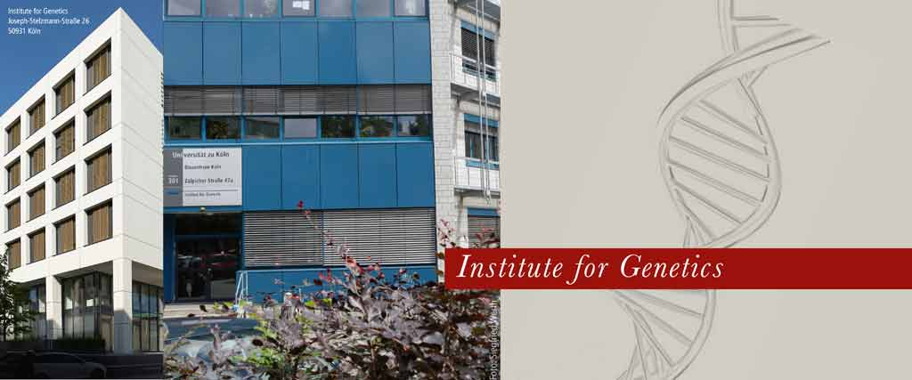 Institut Für Genetik Köln
